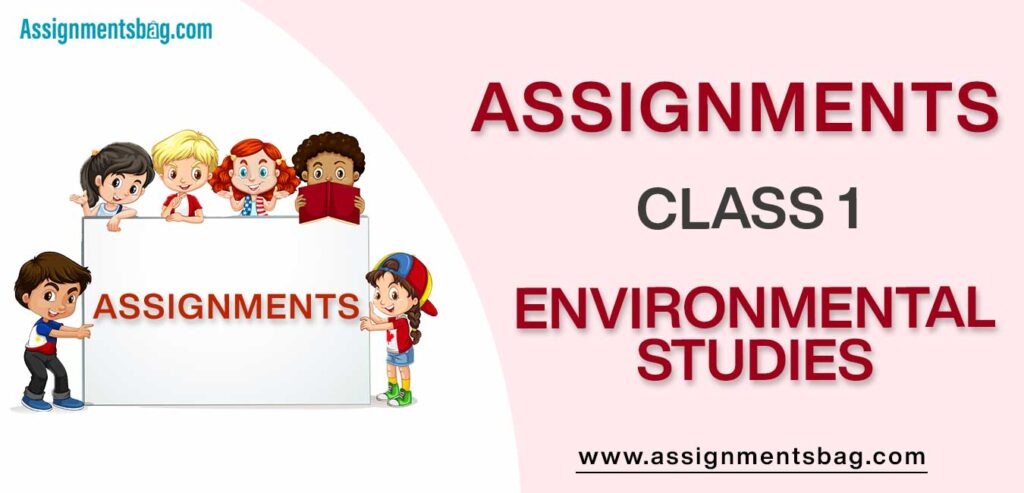 Assignments For Class 1 Environmental Studies