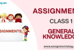 Assignments For Class 1 General Knowledge
