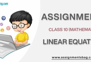 Assignments For Class 10 Mathematics Linear Equations