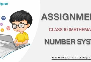 Assignments For Class 10 Mathematics Number System