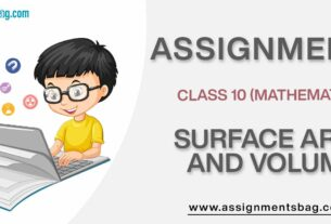 Assignments For Class 10 Mathematics Surface Area And Volume