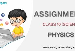 Assignments For Class 10 Physics