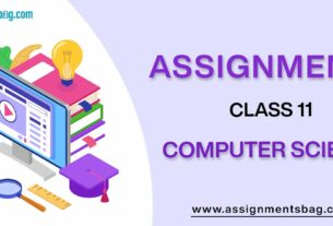 Assignments For Class 11 Computer Science