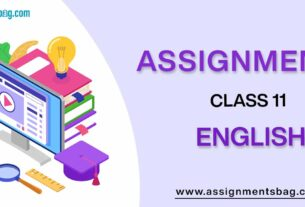 Assignments For Class 11 English