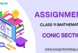 Assignments For Class 11 Mathematics Conic Section