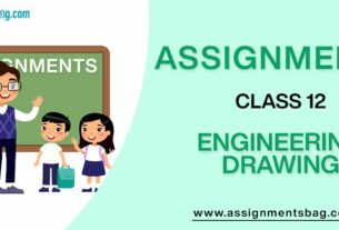 Assignments For Class 12 Engineering Drawing