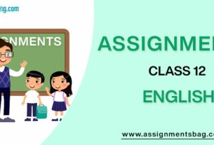 Assignments For Class 12 English