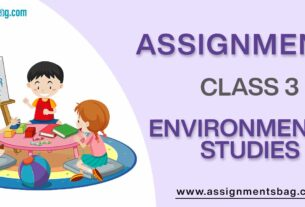 Assignments For Class 3 Environmental Studies