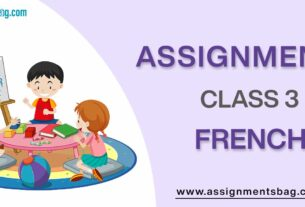 Assignments For Class 3 French