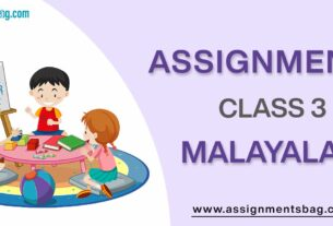 Assignments For Class 3 Malayalam