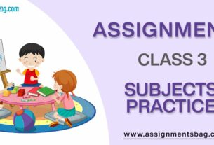 Assignments For Class 3 Subjects Practice