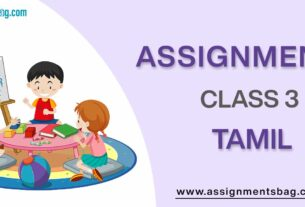 Assignments For Class 3 Tamil