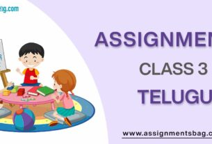 Assignments For Class 3 Telugu