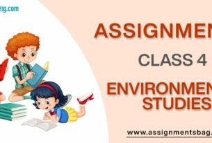 Assignments For Class 4 Environmental Studies