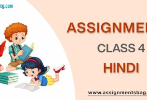 Assignments For Class 4 Hindi