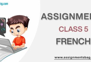 Assignments For Class 5 French