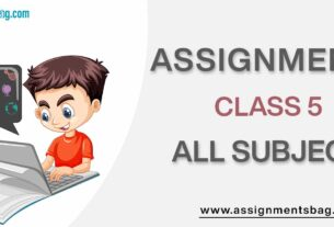 Assignments For Class 5 all subject