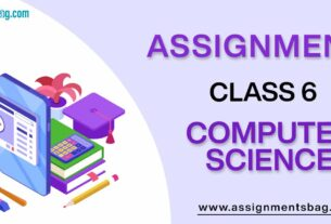 Assignments For Class 6 Computer Science
