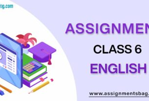 Assignments For Class 6 English