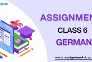 Assignments For Class 6 German
