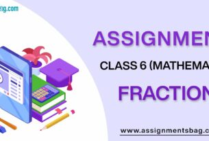 Assignments For Class 6 Mathematics Fractions