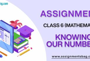 Assignments For Class 6 Mathematics Knowing Our Numbers