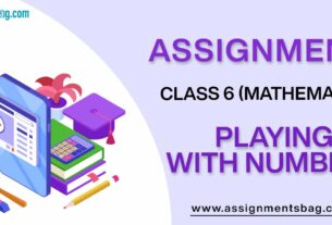 Assignments For Class 6 Mathematics Playing With Numbers