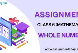 Assignments For Class 6 Mathematics Whole Numbers