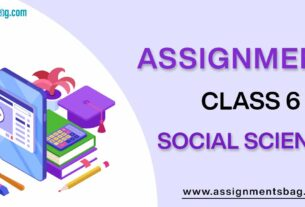 Assignments For Class 6 Social Science