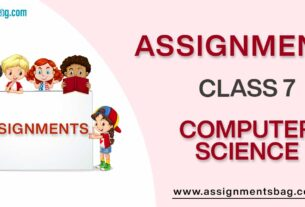 Assignments For Class 7 Computer Science