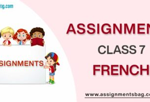 Assignments For Class 7 French