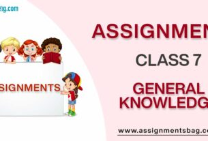 Assignments For Class 7 General Knowledge