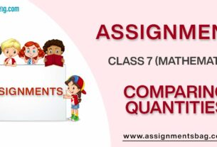 Assignments For Class 7 Mathematics Comparing Quantities