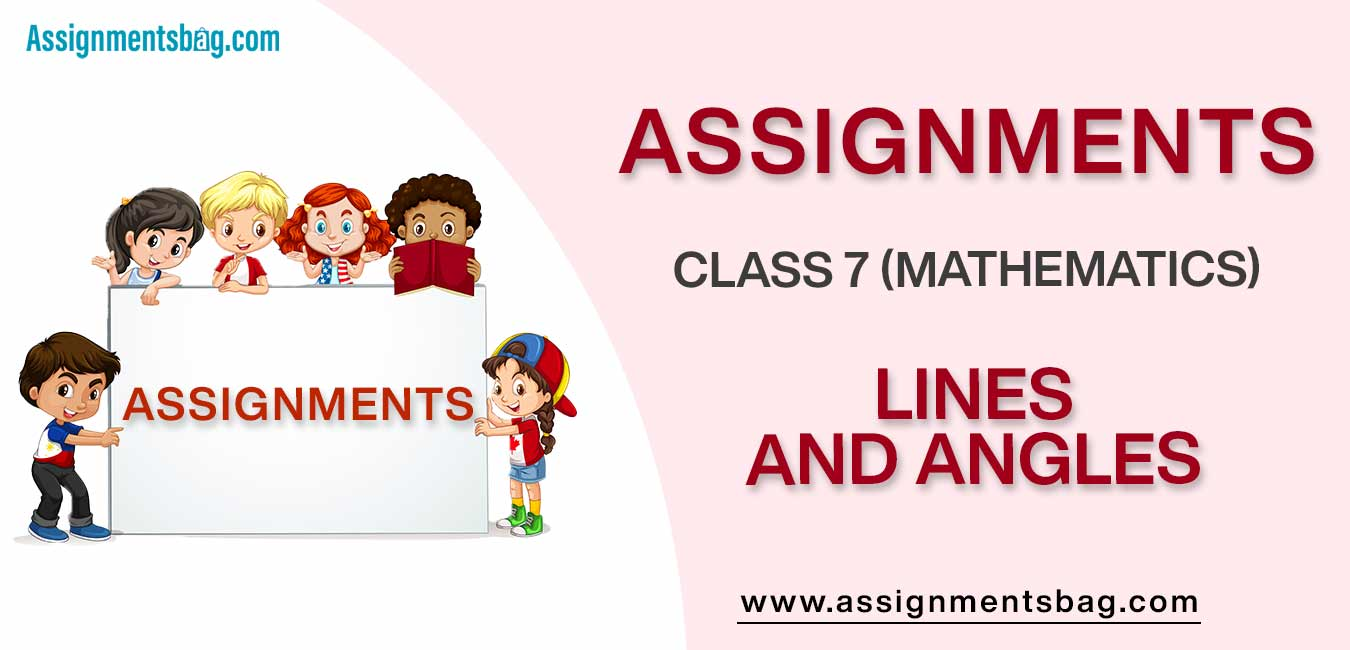 Assignments For Class 7 Mathematics Lines And Angles
