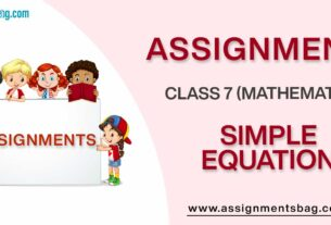 Assignments For Class 7 Mathematics Simple Equation