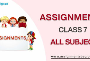 Assignments For Class 7 all subject
