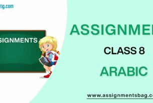 Assignments For Class 8 Arabic