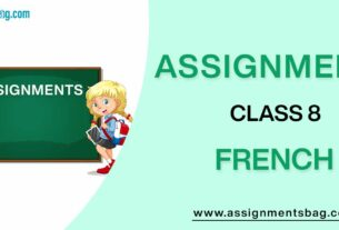 Assignments For Class 8 French
