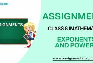 Assignments For Class 8 Mathematics Exponents And Powers
