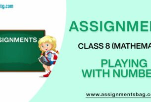 Assignments For Class 8 Mathematics Playing With Numbers