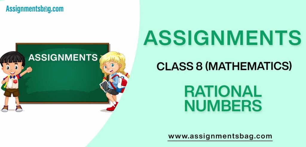 Assignments For Class 8 Mathematics Rational Numbers