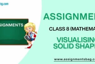 Assignments For Class 8 Mathematics Visualising Solid Shapes