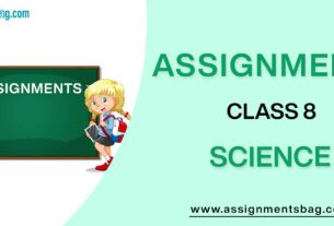 Assignments For Class 8 Science