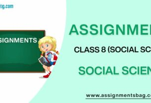 Assignments For Class 8 Social Science