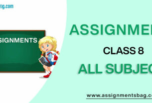 Assignments For Class 8 all subject