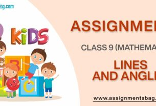 Assignments For Class 9 Mathematics Lines And Angles