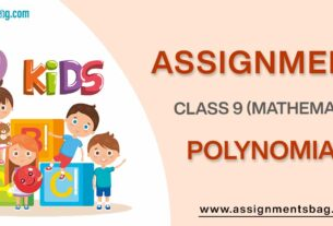Assignments For Class 9 Mathematics Polynomials