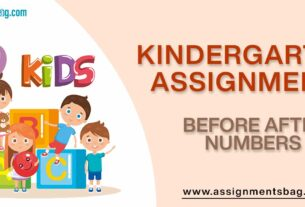 Before After Numbers Assignments Download PDF