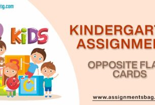 Opposite Flash Cards Assignments Download PDF